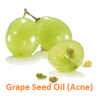 Grape Seed Oil Acne