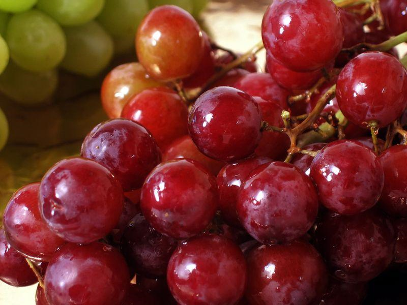 grape seed oil benefits acne prone skin